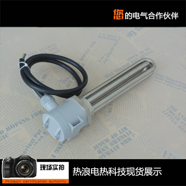 Oil tank antifreeze electric heater
